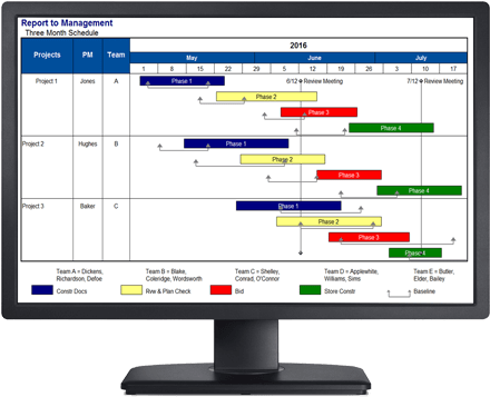 project management software milestones professional 2017